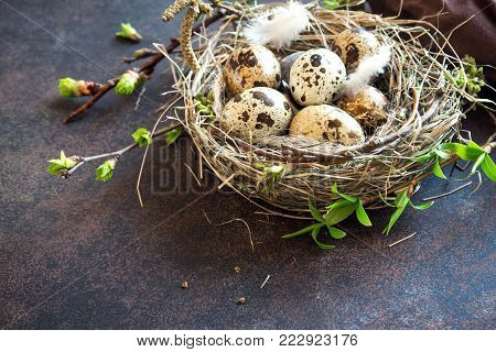 Easter Eggs In Nest