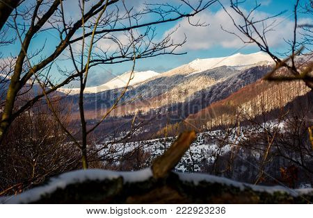 mountain ridge with high snowy tops. beautiful Carpathian landscape in winter. view through the branches of trees. lovely nature background