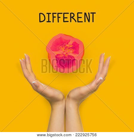 Conceptual lifestyle background. Female hands against backdrop with red colored pepper half and different inscription. Dare to be different and individuality motivation poster