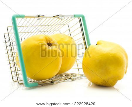 Three yellow quince in a shopping basket isolated on white background raw fresh poster