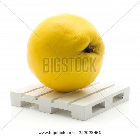 One yellow quince on a pallet isolated on white background raw fresh