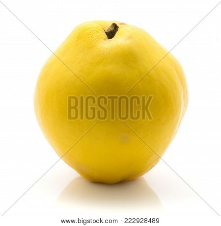 One yellow quince isolated on white background raw ripe fresh