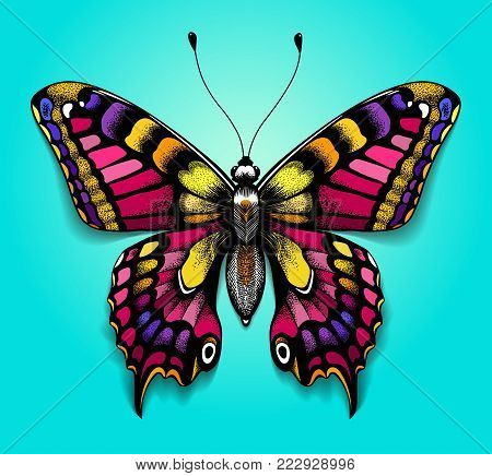 Beautiful colorful butterfly on blue background. Bright tattoo for your back. Tropical realistic butterfly. Illustration of butterfly. Butterfly machaon