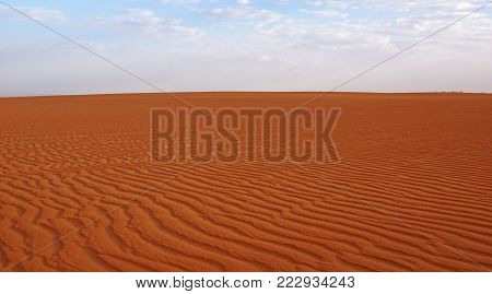 orange sand under a blue sky, which the wind formed to waves in western sahara in Mauritania