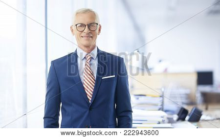 Senior Elderly Businessman Portait