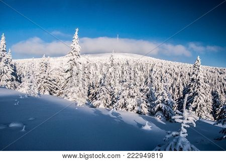 Praded hill in Hruby Jesenik mountains in Czech republic during freezing winter day with snow and blue sky with clouds