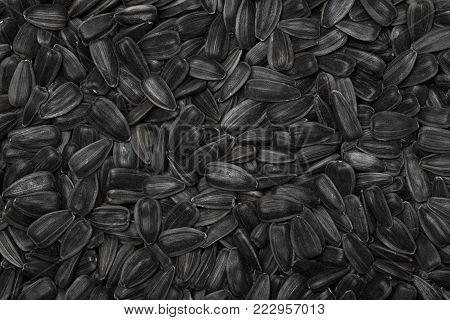 Sunflower Seeds. Fresh Black Sunflower Seeds Texture Background Top View And Close Up.
