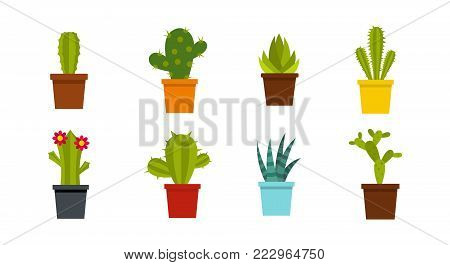 Room cactus icon set. Flat set of room cactus vector icons for web design isolated on white background