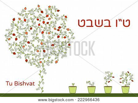 Vector illustration of Jewish holiday. A tree with pomegranate fruits and young sprouts in pots for planting. Text Tu Bishvat on Hebrew, which means the Jewish holiday New Year of the Trees