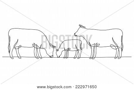 Continuous Line Drawing Of Cow And Calf