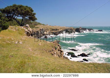 the rocky California coast
