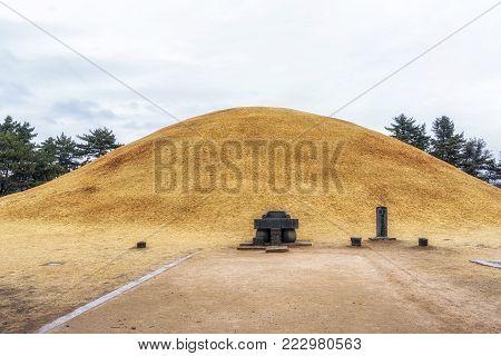 King Michu Royal Mound
