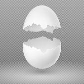 Opened white egg with broken shell isolated vector illustration. Eggshell fragile broken, open and cracked oval egg poster