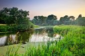 Summer landscape with river on sunset background poster