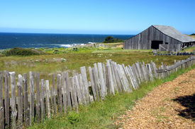 Sea Ranch coast, California
