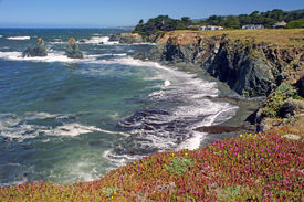 coastline along Sea Ranch, CA