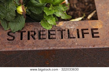 Detail From A Large Metal Flower Pot Found In The Middle Of Town, With The Text - Streetlife