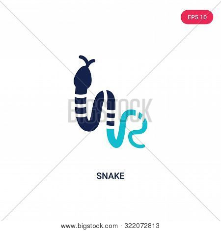 snake icon in two color design style.