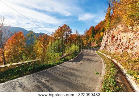 Narrow Serpentine Road In Mountains On A Sunny Day. Wonderful Autumn Weather In Afternoon. Trees In