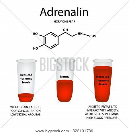 Chemical molecular formula of adrenaline hormone. Hormone fear and stress. Lowering and raising the level of adrenaline. Infographics illustration poster
