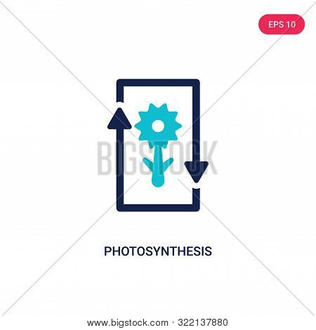 photosynthesis icon in two color design style.