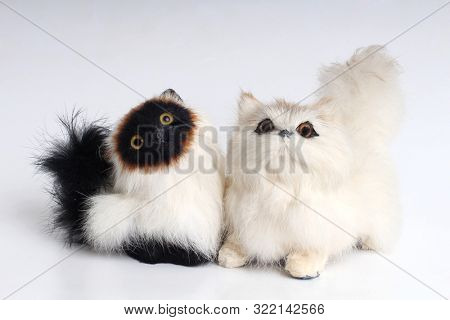 Plush cat toy on a white background