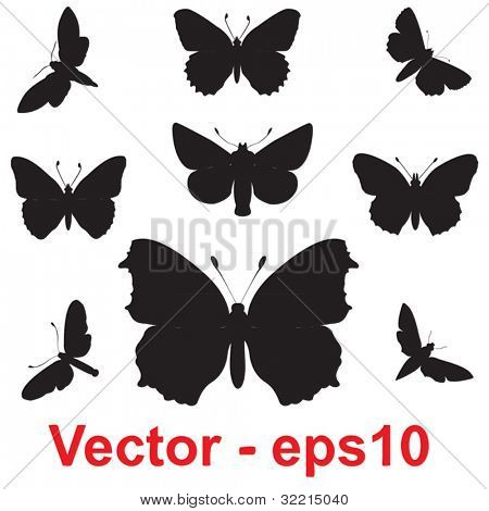 Vector concept or conceptual group,set or collection of black shapes or silhouettes of insects or butterfly isolated on white background for symbol,tattoo,fly,wing,summer,spring,decoration or ornament