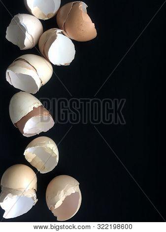 Eggshells on dark background. Background for banner. poster