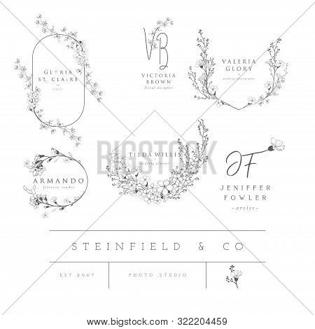 Vector Set Of Line Design Elements For Floral Logos, Frames And Border. Decorated With Detailed Deli