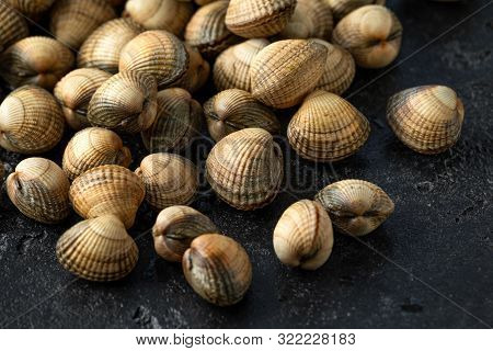 Fresh Raw Cockle Molluscs In Heart-shaped Shells, Sea Food Shellfish On Dark Background