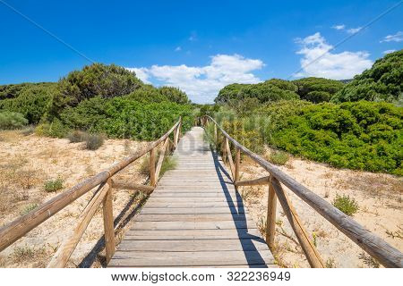 Wooden Planks Footbridge In Trafalgar Cape Natural Park To The Forest