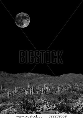 Desert Full Moon Over The Southwestern Usa Sonora Desert And Mountains