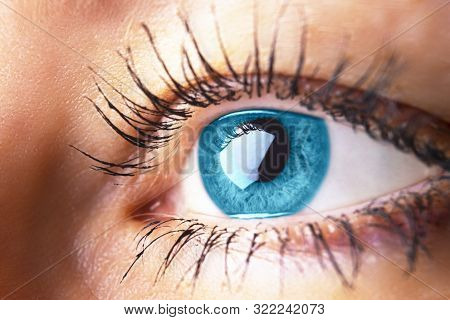 Beautiful Human Eye Close-up. Young Woman Blue One Eye Macro Shoot. Macro Shot Closeup Eye Looking U