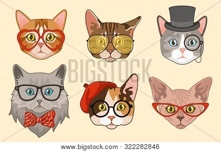 Cat Heads. Cute Funny Cats Avatar Muzzles With Accessories, Glasses And Hats, Bow Tie. Happy Hipster