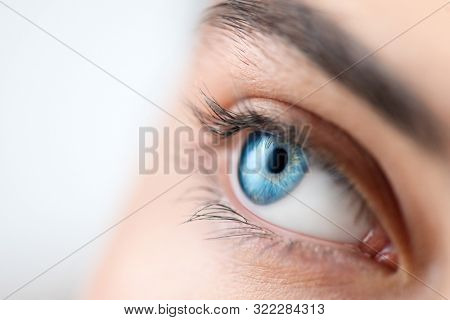 Beautiful human eye close-up. Young Woman Blue one eye macro shoot. Macro Closeup eye looking up, isolated on white background. Eyelashes, eyebrows closeup