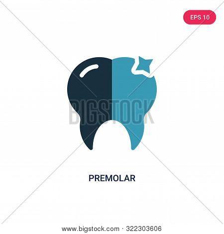 premolar icon in two color design style.