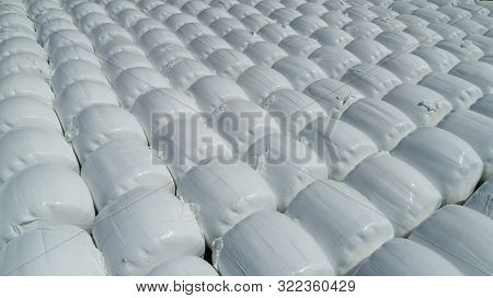 Storage Of Corn Bagasse For Animals; Corn Background