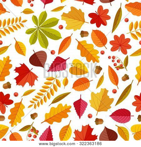 Autumn Leaves Pattern. Abstract Repeating Fall Leaf, Colorful Foliage Texture For Wallpaper And Gift
