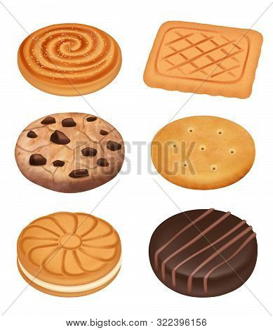 Cookies. Delicious Food Dessert Sweets Creamy Biscuits With Chocolate Crumbles Pieces Crackers Vecto