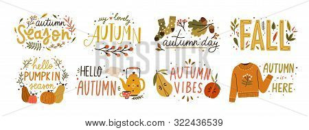 Autumn Hand Drawn Lettering Vector Set. Fall Season Handwritten Slogan Stickers Pack. Autumn Phrases