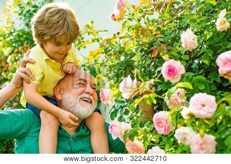 Happy Grandfather Giving Grandson Piggyback Ride On His Shoulders And Looking Up. Grandfather Carryi