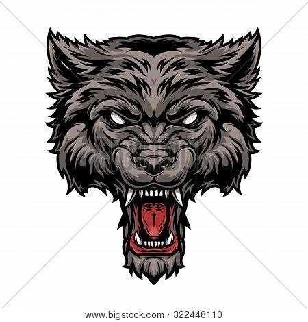 Colorful Dangerous Scary Ferocious Wolf Head In Vintage Style Isolated Vector Illustration