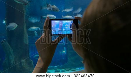 Woman Takes Photo In Oceanarium. Technology And Entertainment Concept