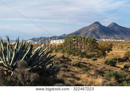 Green Landscape Between In The Coast Of Cabo De Gata, Almeria, Spain