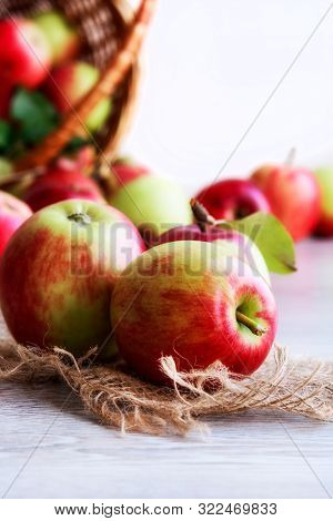 Ripe Organic Apples On Jute Fabric On A Light Background.