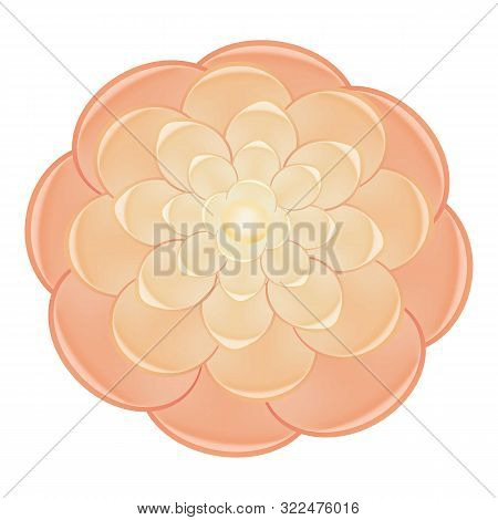 Gradient Red Camellia Icon. Cartoon Of Gradient Red Camellia Vector Icon For Web Design Isolated On