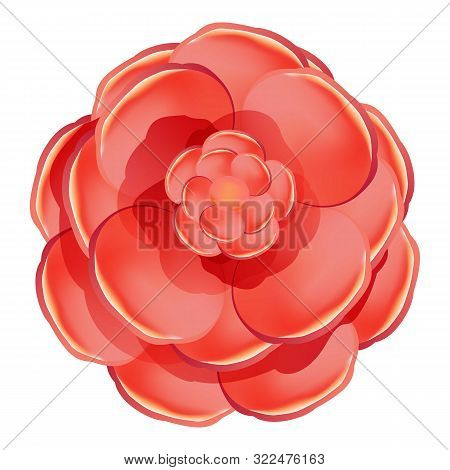 Red Rose Camellia Icon. Cartoon Of Red Rose Camellia Vector Icon For Web Design Isolated On White Ba