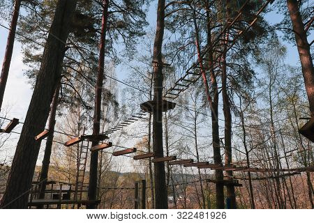 Ladder For An Obstacle Course In The Forest. Extreme Sport.