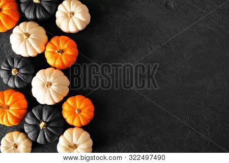 Autumn Pumpkin Side Border In Halloween Colors Orange, Black And White Against A Black Stone Backgro