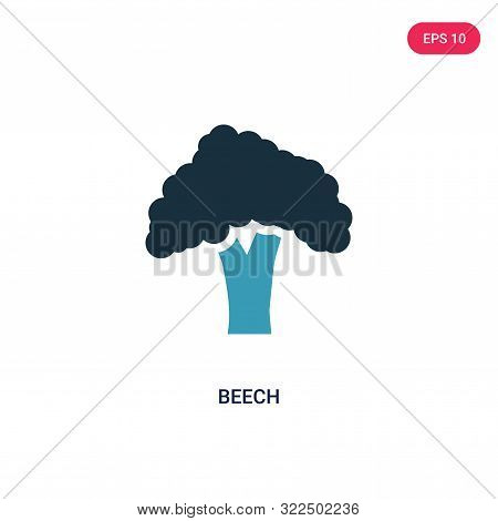 beech icon in two color design style.
